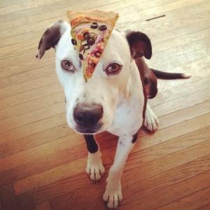 Reno loves pizza.